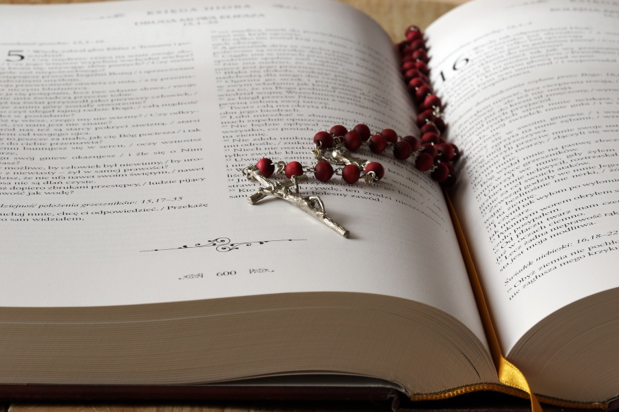 beads-bible-blur-book-236339